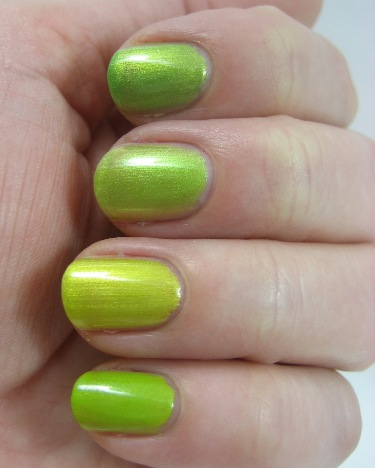Lime shimmers