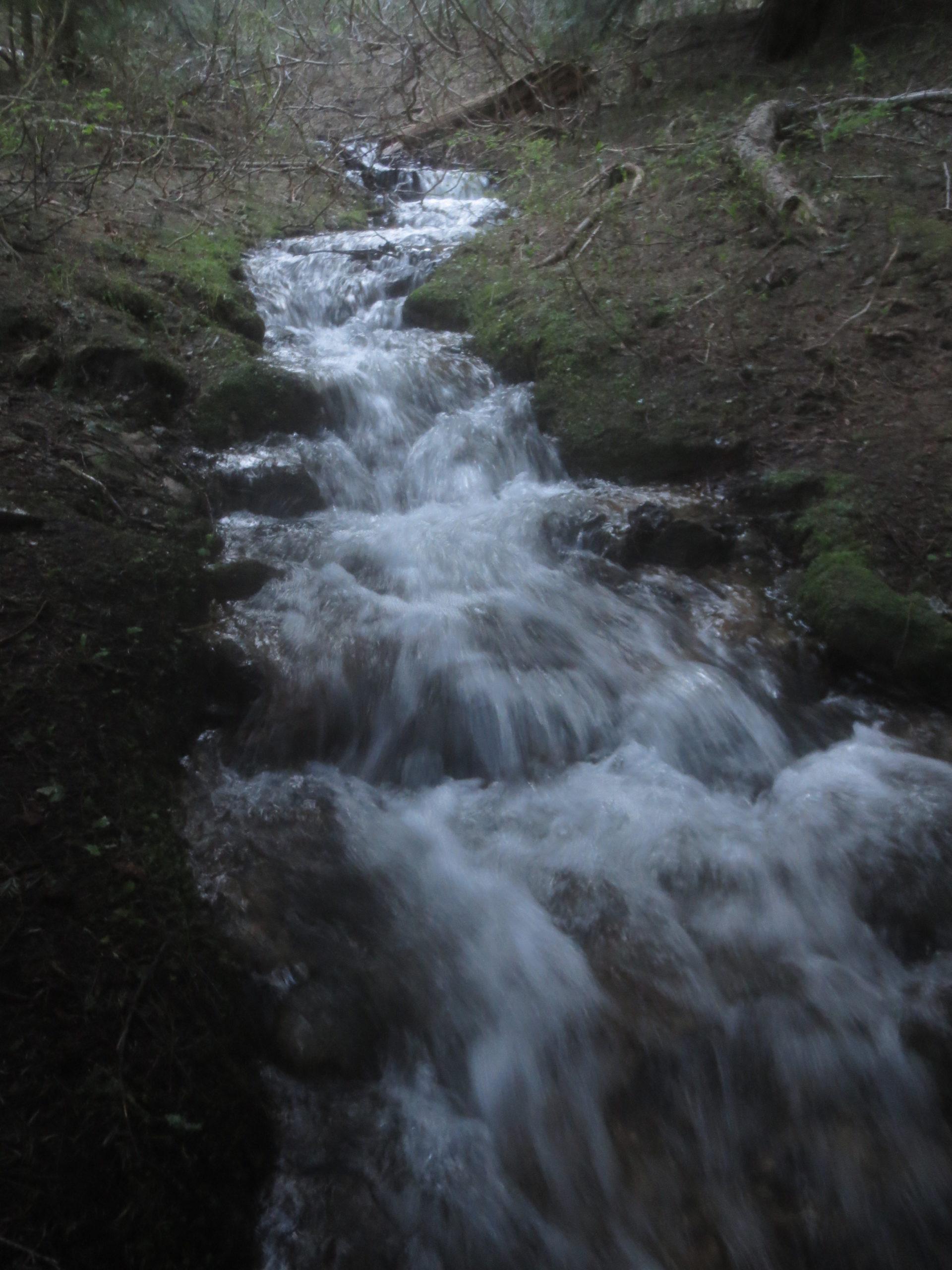mountain stream swollen with snowmelt