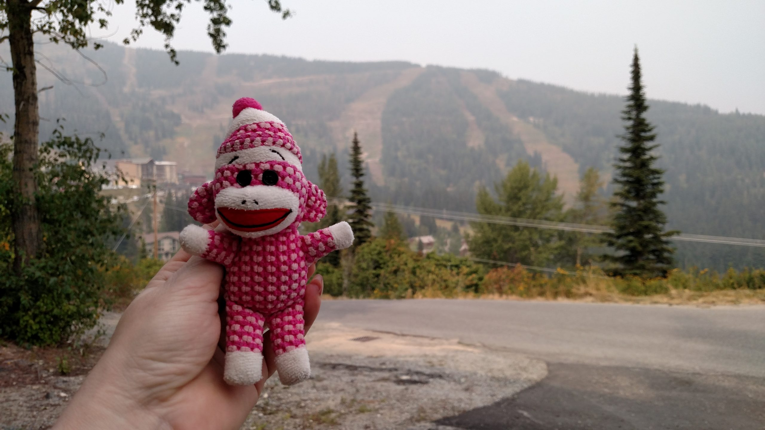 small pink sock monkey with mountain in the background