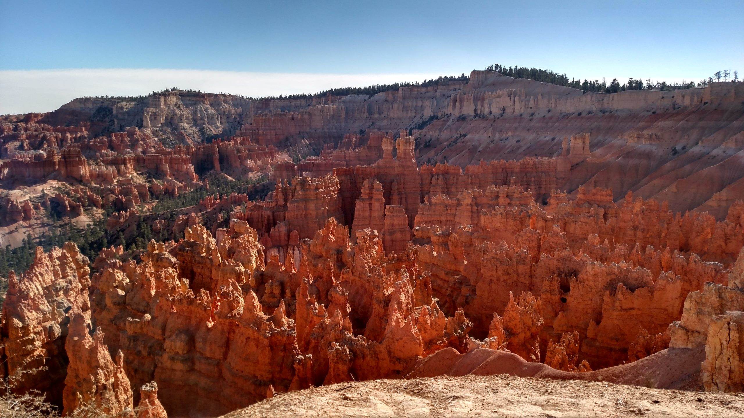 Bryce Canyon in Utah with orange rock formations