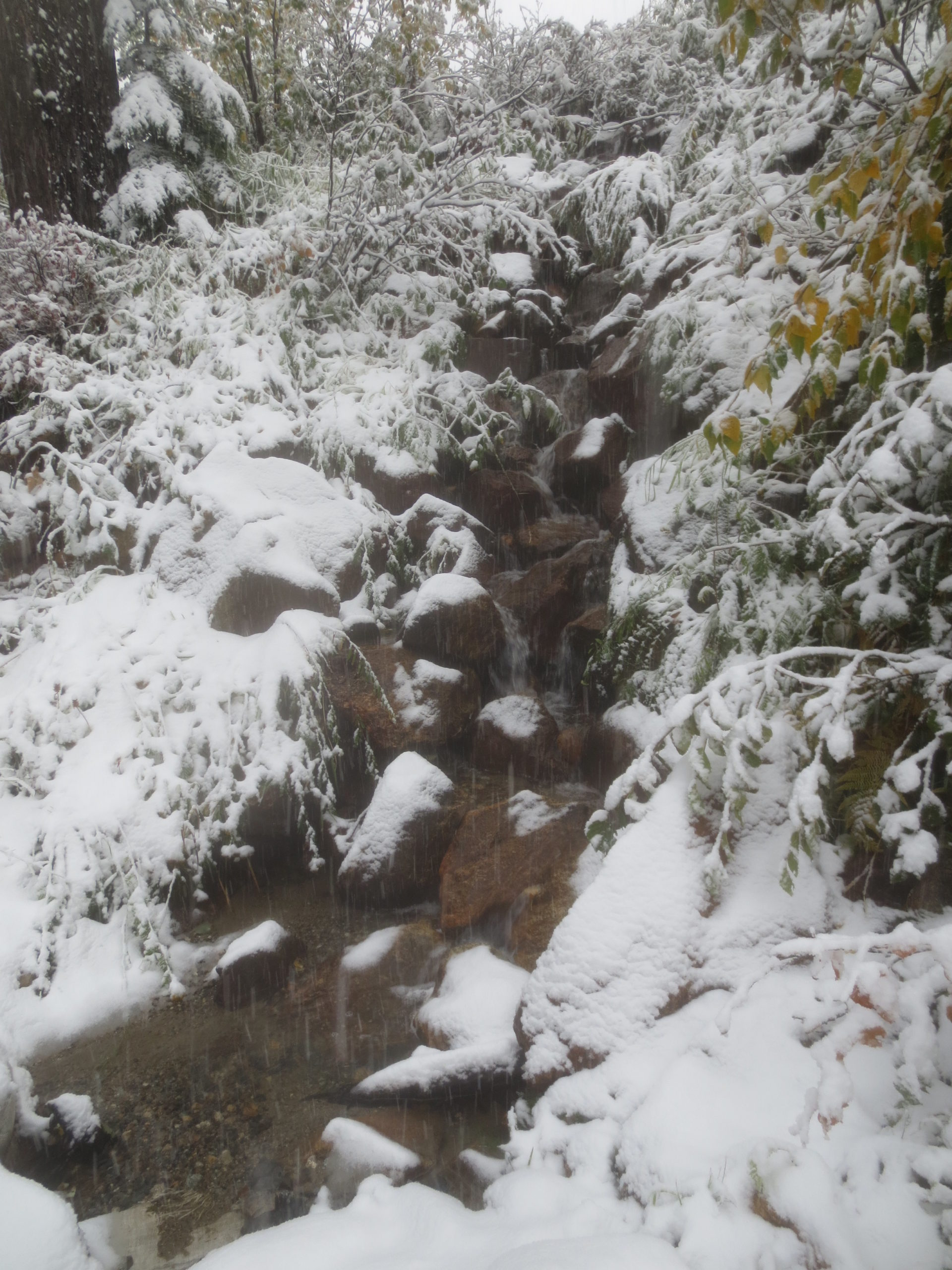 creek running down the side of a hill with snow on the banks
