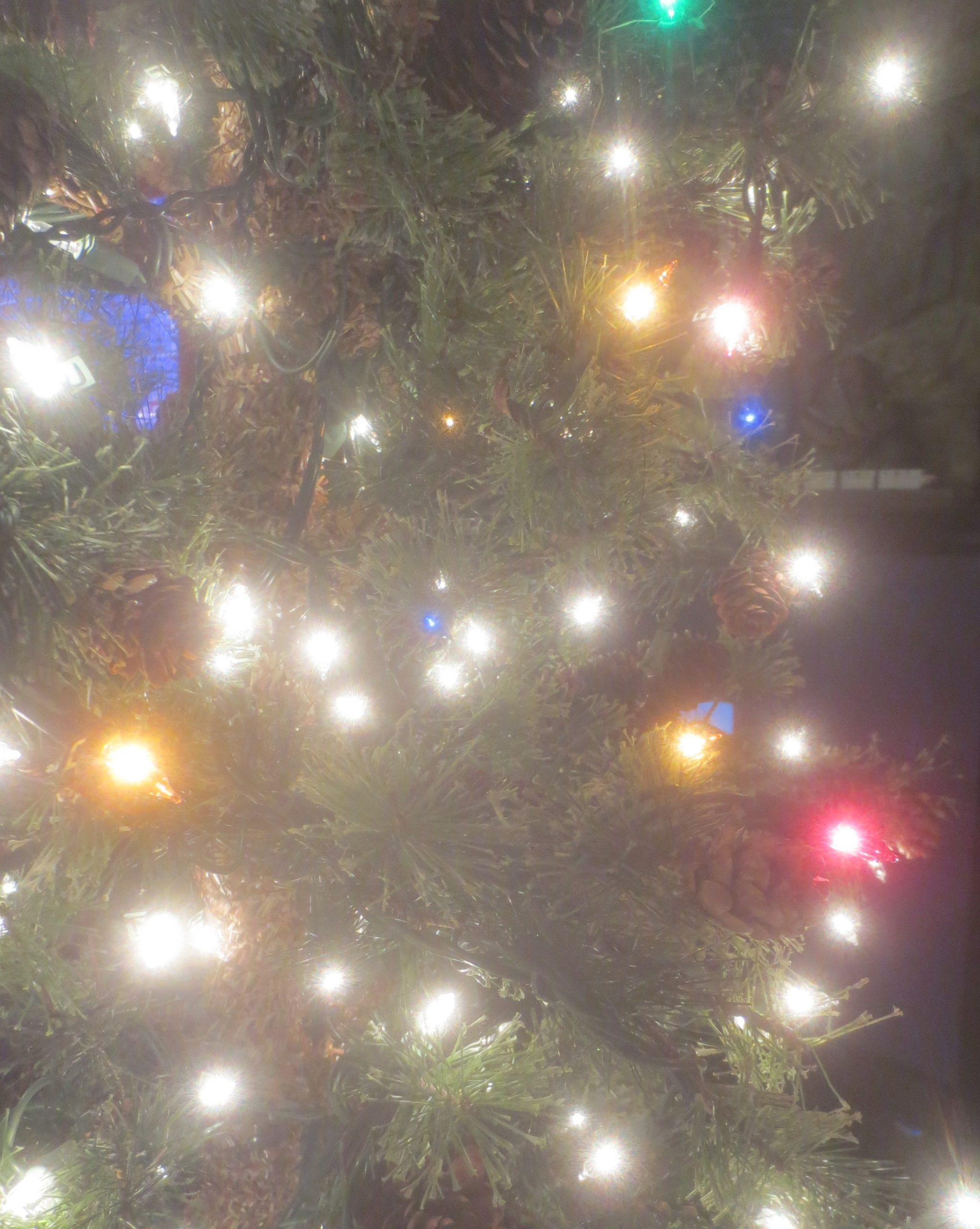 close up of a Christmas tree with mostly white lights