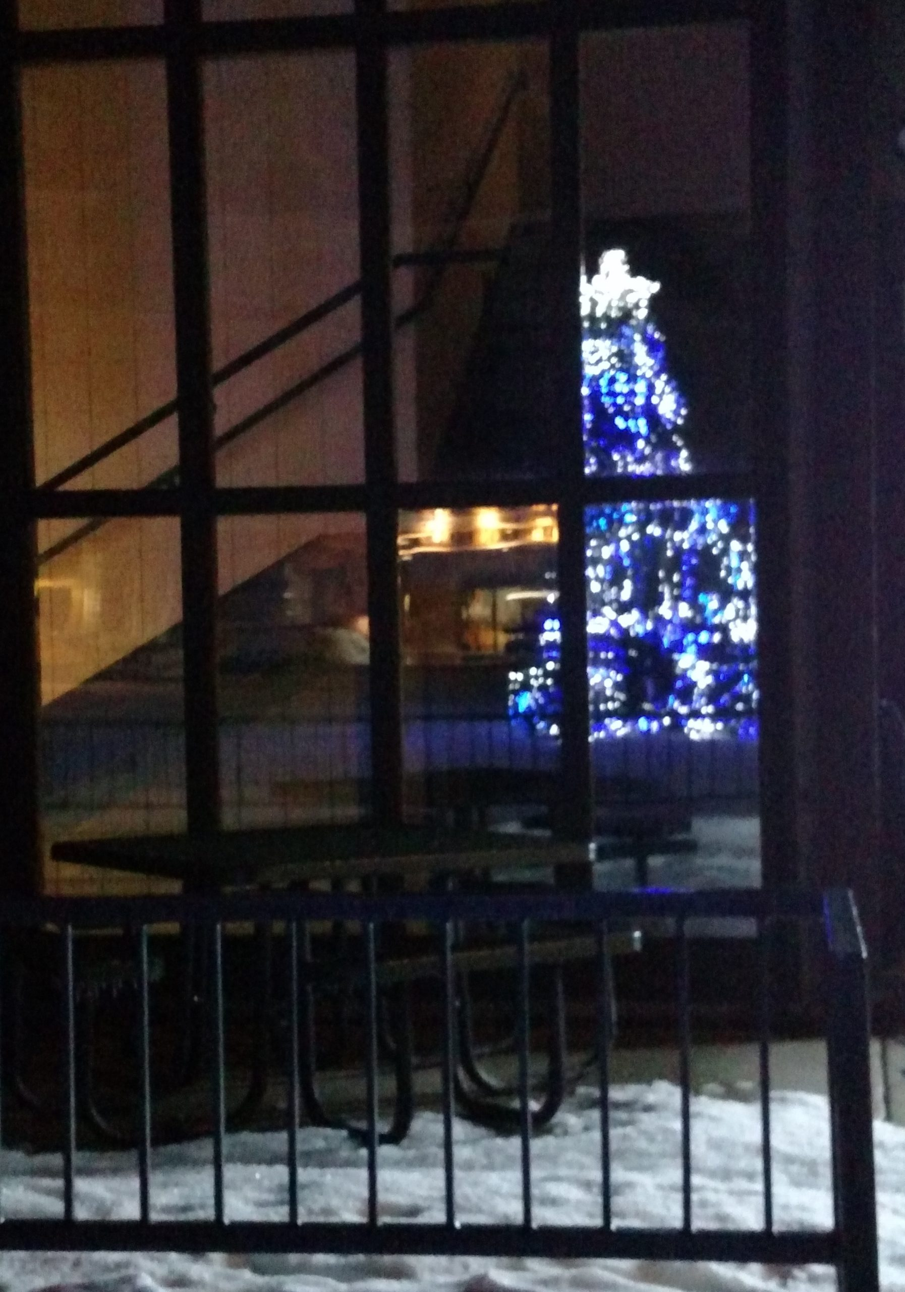 Christmas tree with blue and white lights reflected in the windowed wall of a nearby building